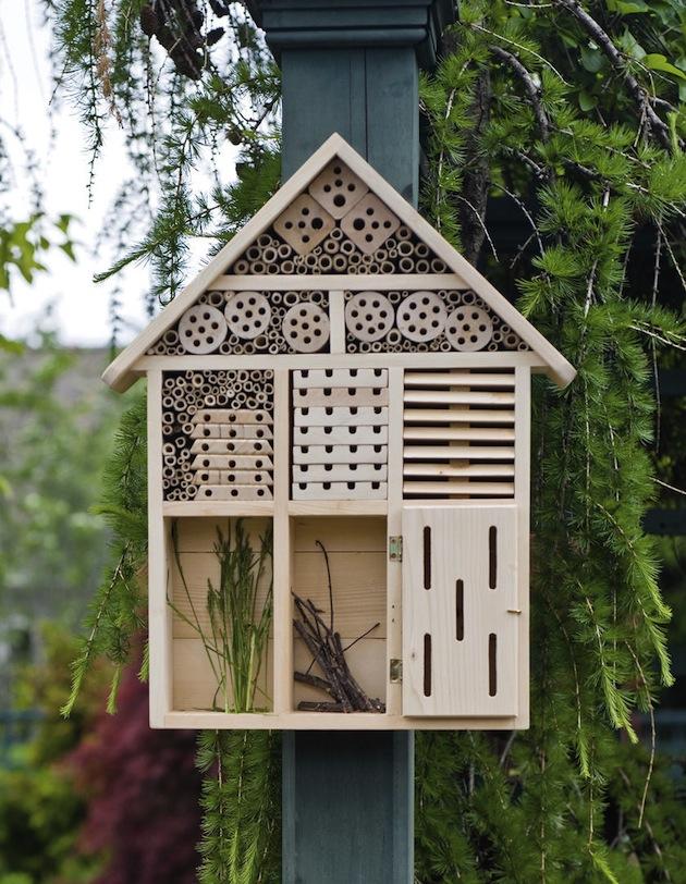 insectenhotel maken | imkerij beelicious | de meest limburgse